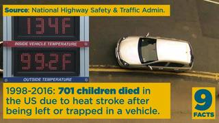 9 Facts: Hot car dangers