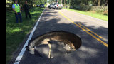 Sinkhole reported in Citra Tuesday morning, Marion County deputies say.