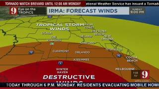 Forecast winds through the morning