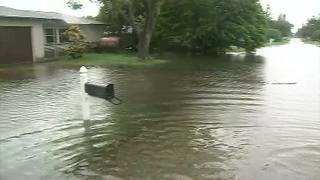 Raw Video: Merritt Island neighborhood floods during Hurricane Irma