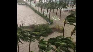Raw video: Strongs winds, heavy rain in Miami as Hurricane Irma approaches