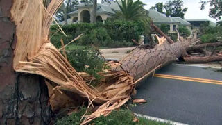 Video: Volusia County residents clean up from Hurricane Irma
