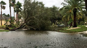 Downed trees and flooding from Hurricane Irma in a Hunter's Creek subdivision.