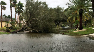 Video: Hurricane Irma: Osceola County damage