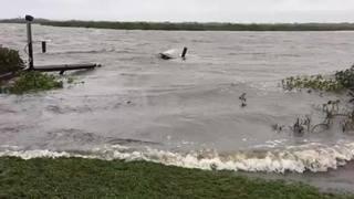 Raw video Volusia County: Cedar Island in Bethune Beach following Hurricane Irma