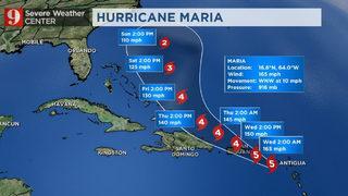 What Is Steering Maria