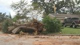 Central Florida still dealing with removal of Hurricane Irma debris
