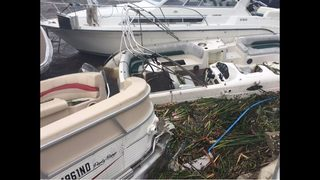 Video: Clean up under way in Lake Dora so sea planes can land safely
