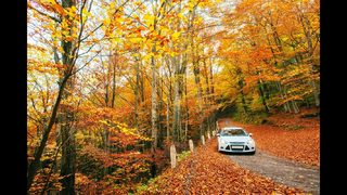 Fall auto service can get your ride ready for the upcoming season