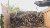 Orange County debris cleanup.
