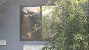 Man tries to break into Palm Bay home, police said.