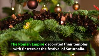 Video: The history of the Christmas Tree