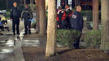 VIDEO: Police: Man gets stranded on Lake Eola fountain after stolen swan boat drifts away