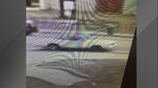 Volusia County deputies are searching for the driver in a hit-and-run
