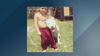 Dog quarantined, might be euthanized after boy dies of rabies