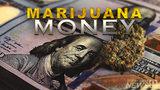 Recreational marijuana in Florida? Not so fast
