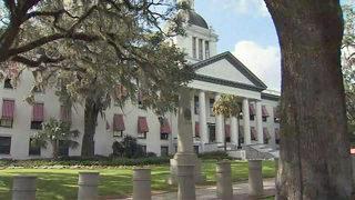 Video: Amendment 4: Restoring felons