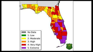 Heightened wildfire risk: Floridians urged to take caution