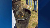 Video: Students upset after watching teacher allegedly drown raccoons