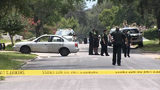 VIDEO: Pregnant woman killed; girl, infant injured in Pine Hills shooting
