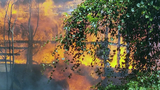 Dog dies when flames engulf home near Orange City