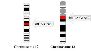 9 Facts about BRCA Mutations and Testing