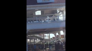 Disney Monorail door unhinged while passengers boarded