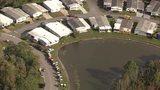 Raw: Crews search for alligator