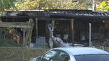 Video: 6-year-old girl killed, five injured in Mims house fire, deputies say