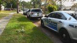 Video: Dozens of cars broken into in Rockledge