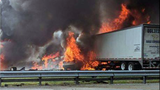 VIDEO: Children killed in fiery I-75 crash were headed to Disney World, FHP says