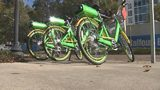 Video: Lime ride sharing bikes becoming a nuisance