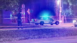 VIDEO: Pedestrian killed in hit-and-run crash on John Young Parkway