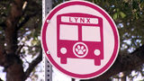 Video: Lynx may not get a new CEO until 2021