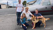 Dog found abandoned in Colorado reunited with Florida family after 2017 theft