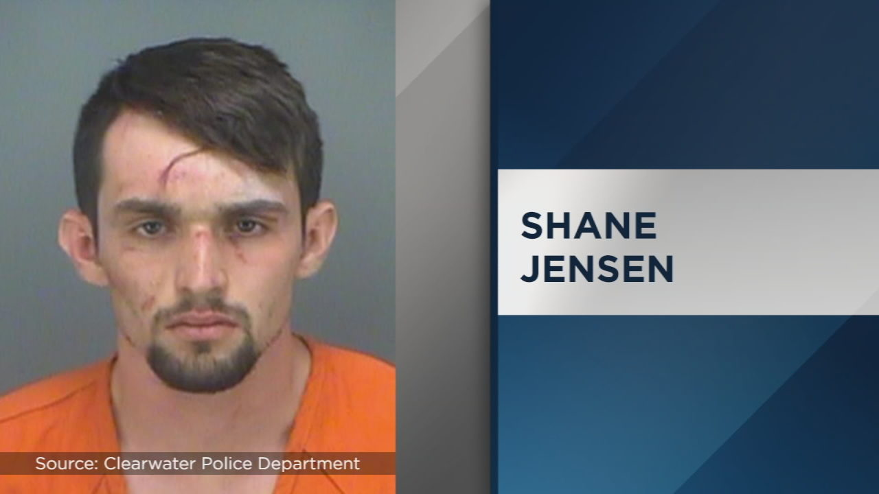 Florida man wanted for carjacking arrested after stealing FHP