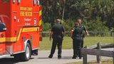 Large alligator captured after biting woman swimming in Brevard County pond
