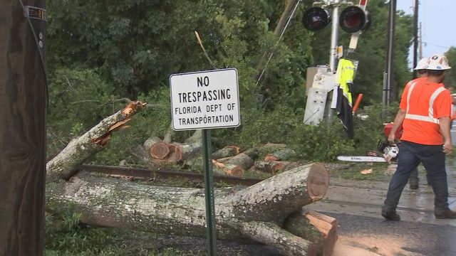 SunRail trains delayed after large tree obstructs railroad