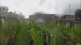 Watering restrictions are in effect for most of Central Florida