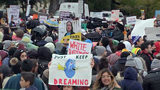 VIDEO: Supreme Court considers legality of Trump administration's winding down of DACA